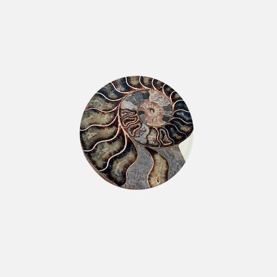 Ammonite Mini Button