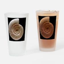 Ammonite Drinking Glass