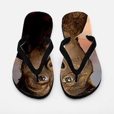 Model of 'Lucy' Flip Flops