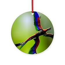 Microraptor dinosaur flying, artwor Round Ornament