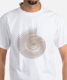 Ammonite Shirt