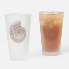 Ammonite Drinking Glass