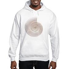Ammonite Hoodie