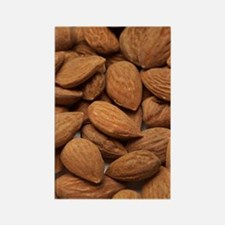 Almonds Rectangle Magnet