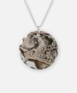 Middle ear anatomy, 1844 art Necklace