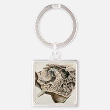 Middle ear anatomy, 1844 artwork Square Keychain