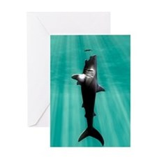Megalodon prehistoric shark with hum Greeting Card