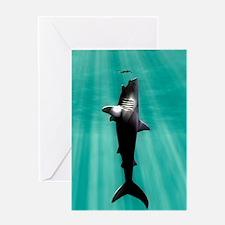 Megalodon prehistoric shark with hum Greeting Card