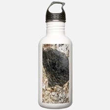 Mica inclusion Water Bottle