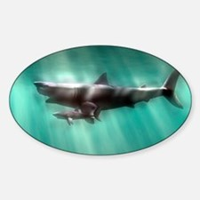Megalodon shark and great white Decal