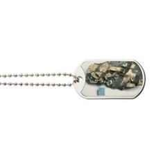 Material from Chicxulub meteorite impact  Dog Tags