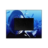 Shark Picture Frames