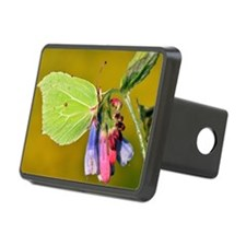Male brimstone butterfly Hitch Cover