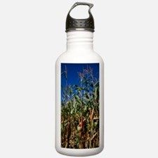 Maize crops Water Bottle