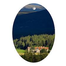 Mar Lodge Estate, Scotland, UK Oval Ornament