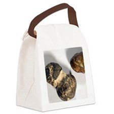 Manganese nodules Canvas Lunch Bag