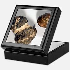 Manganese nodules Keepsake Box