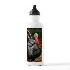 Male domestic turkey Water Bottle