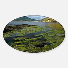 Loch Duich Sticker (Oval)