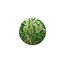 Maize crop Mini Button