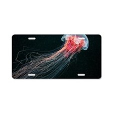 Lion's mane jellyfish Aluminum License Plate