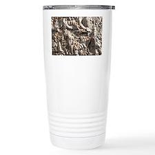 Limestone with fossilised shell Travel Mug