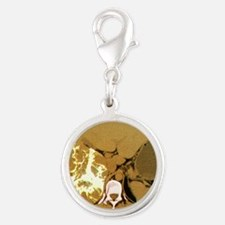Liver cancer, CT scan Silver Round Charm