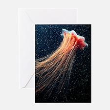 Lion's mane jellyfish Greeting Card