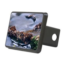 Leaves in a stream Hitch Cover
