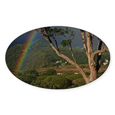 Rainbows over landscape Decal