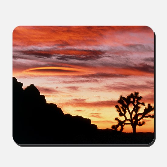 Lenticular cloud, Joshua Tree NM, sunset Mousepad