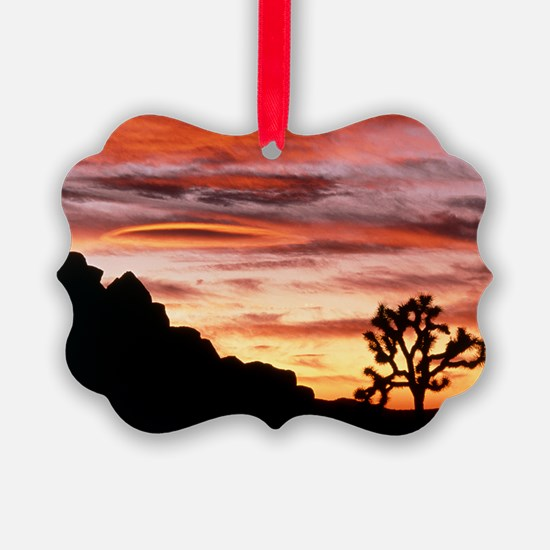 Lenticular cloud, Joshua Tree NM, Ornament
