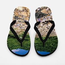 Landfill site Flip Flops