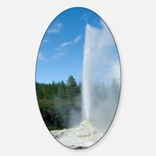 Lady Knox Geyser, New Zealand Decal