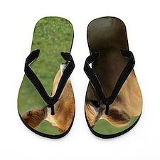 Jersey cow Flip Flops