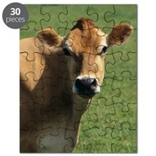 Jersey cow Puzzle