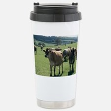 Jersey cows Stainless Steel Travel Mug