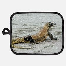 Komodo dragon on a beach Potholder
