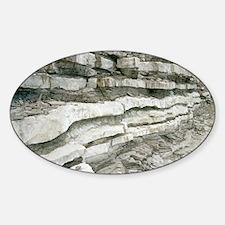 Jurassic rock strata Sticker (Oval)