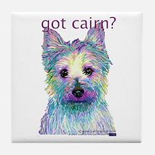 Got Cairn? Tile Coaster