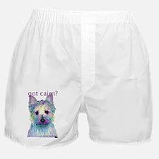 Got Cairn? Boxer Shorts