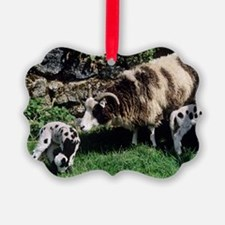 Jacob sheep Ornament