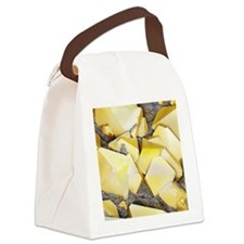 Iron pyrite crystals, SEM Canvas Lunch Bag