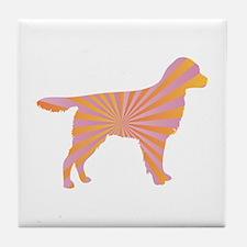 Stabyhoun Rays Tile Coaster