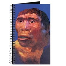 Java Man reconstruction Journal