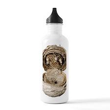 Inside of a wasp nest Water Bottle