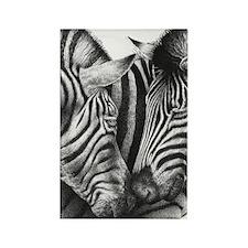 Zebras Kindle Sleeve Rectangle Magnet