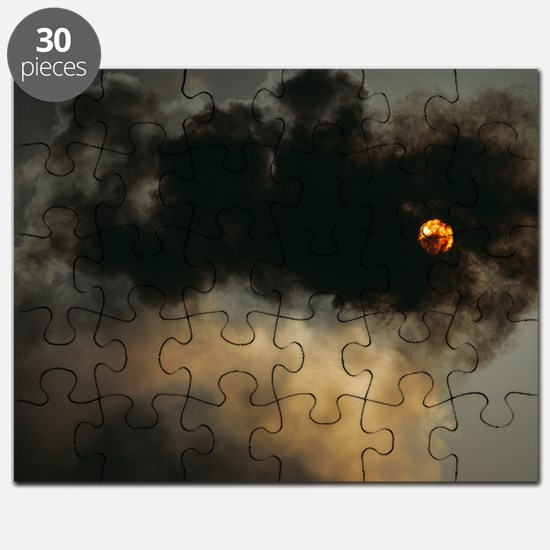 Industrial air pollution Puzzle