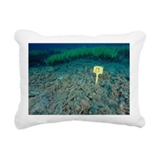 Invasive seaweed control Rectangular Canvas Pillow