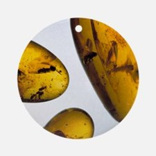 Insects in amber Round Ornament
